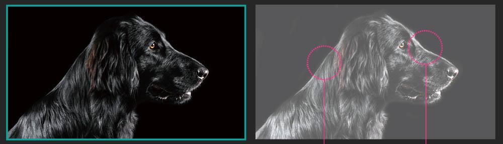 Diferenta dintre negrul absolut la televizoarelor OLED si cele tip LED